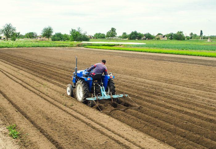 Transmettre son exploitation agricole : Comment s'y préparer ?